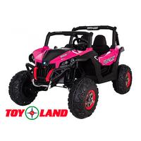 Багги XMX 603 Розовый краска